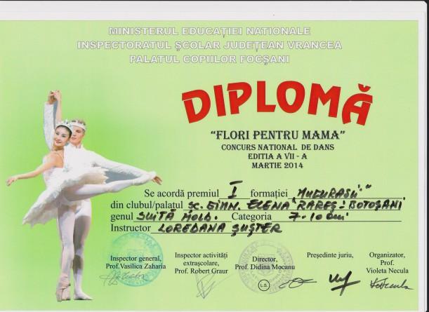 diploma 5 001